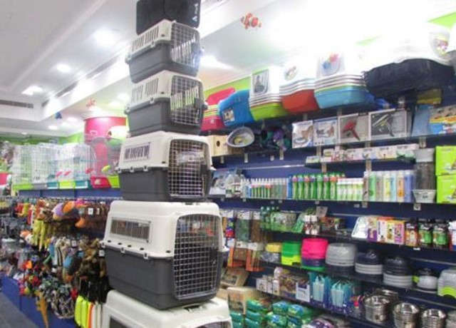 Super Quality Pets Accessories Image-2